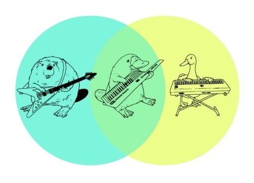 beaverduck-playing-keytar-platypus-music-infographic